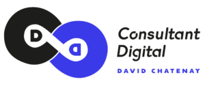 consultant digital seo